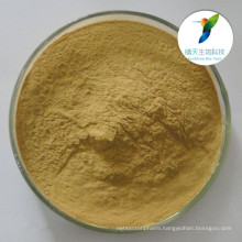 Antibacterial and analgesic ingredient Kava Root Extract/Kava extract powder