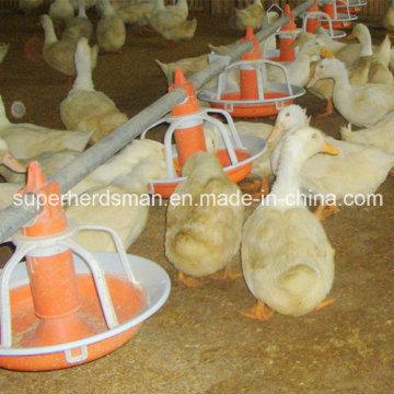 Volailles de haute qualité nourrisseurs et les buveurs du canard