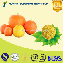 Plastic Container No Added sugar & Pure Natural Pumpkin Powder