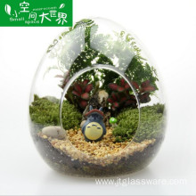 Clear Glass Vase Hanging Glass Terrarium