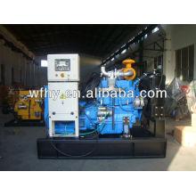40 кВт Дизельный генератор частоты