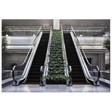 Sicher Elevator Gre20 Slim Escalator