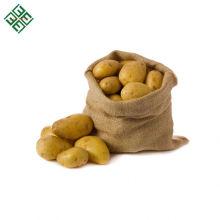Frische Kartoffeln / frische Kartoffeln