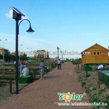 Vendible CE 12W luz de calle solar, luz de calle solar del LED, luz solar