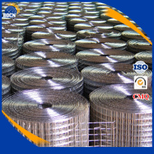 Hot dipped 2x2 galvanized welded wire mesh panel and rol