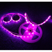 Double LED Body Sensor Bed Light