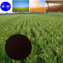 EDDHA Fe Na OO 4.8 Fertilizante EDDHA