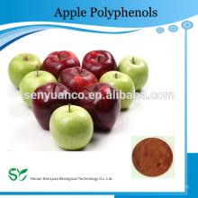 100% natürliche organische Apple Polyphenole