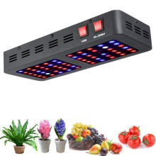 Best 600W Led Plant Lamp Growth Lights