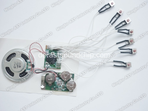 Multi Message Sound Modul, Audio Chip