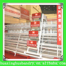 Automatic metal chicken hutches for poultry farm