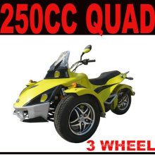 250CC EEC ATV QUAD(MC-389)
