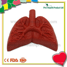 Lung Custom Anti Stress Ball Supplier