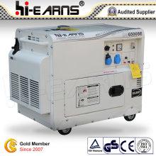 White Color Canopy Diesel Generator Set (DG6500SE)