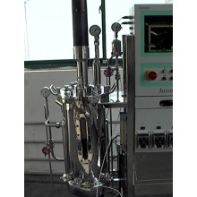 30L High Quality Stainless Steel Fermenter Tank Series
