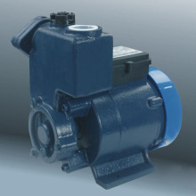 Clean Water Pump (DGP)
