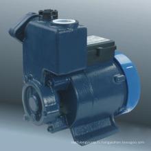 Pompe à vortex auto-amorçante (série DGP)