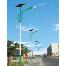 6-meter Solar Light