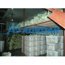 Changzhou Storage Room/Modular Cold Storage Room/Meat Freezer Storage Room