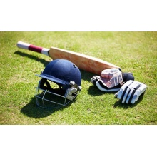 Long Service Life Durable Green Artificial Cricket Lawn