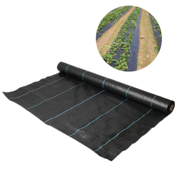 Skyplant Hot-sale Weed Mat Ground Cover