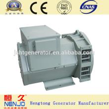NENJO marca 6.5KW / 8KVA ac cabeza de generador de 3 fases sin escobillas con AVR