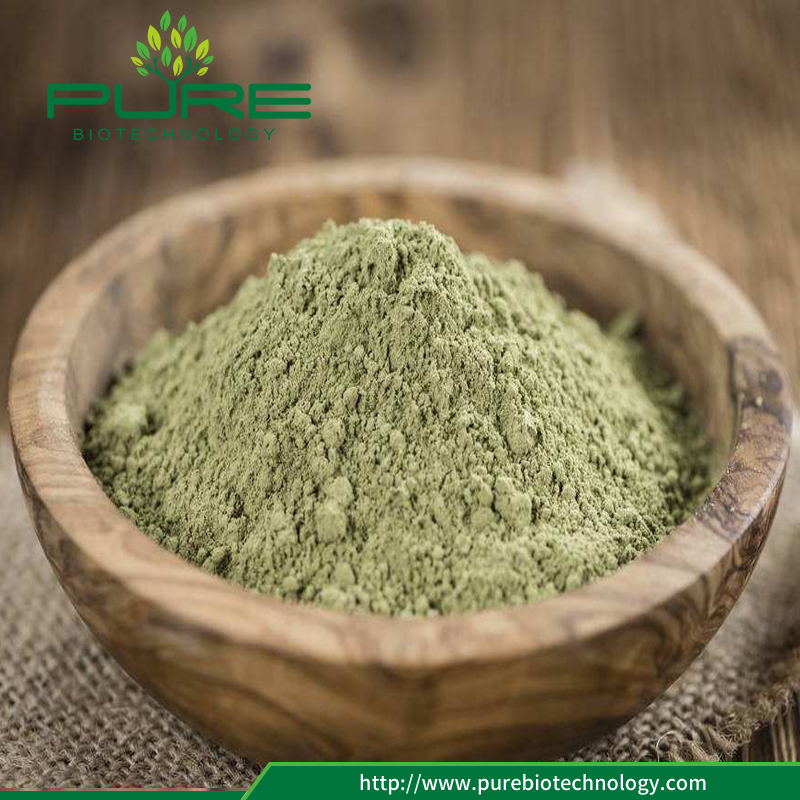 dry stevia Leaf powder