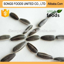Name Of Sunflower Seeds New Crop