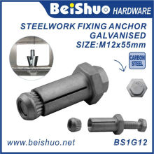 M12X20X55mm High Quality Zinc Plated Fix Bolt for Construction