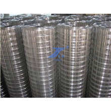 "Welded Wire Mesh Grid Size 1/2"" with Low Price (TS-WM01)"