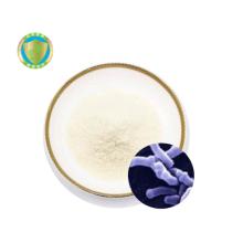 China OEM Probiotic Bulk GMP Factory 200 billion Probiotic  Powder  Bifidobacterium Bifidum