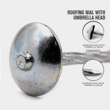 Professional Roofing Umbrella Nail with Nice Price