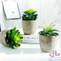 Plantes succulentes artificielles de nouvelle conception dans des pots modernes