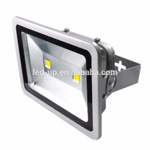 Competitive Price White COB 100w led floodlight garden lighting lamp