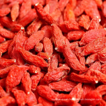 Bag Package Ningxia Organic Wolfberry Goji berry