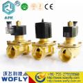 Stainless steel water DC12V 24V solenoid valves
