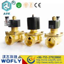 Acier inoxydable DC12V 24V électrovannes