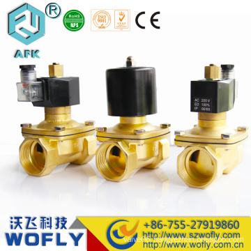 Stainless steel water DC12V 24V solenoid valves