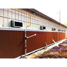 Pad de refroidissement de volaille dans la maison de ferme avec la construction de maison préfabriquée