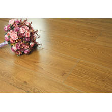 Multifunctional Cheap Floor Rustic Laminate Flooring