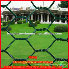 Green powder coated decorative woven wire mesh protecting and segregation hexagonal wire netting