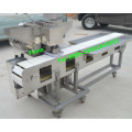 Automatic Barbecue String Machine/Satay Meat Skewer Machine