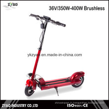 Fabricant chinois Mini Scooter électrique E-Bike / Electric Bicycle Lithium Battery
