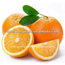 Fresh navel orange (sweet and delicious)