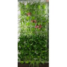 Wand-Pflanze für Indoor Living Wall Vertikale Garten Green Wall