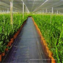 Tissu tissé en PP comme tapis contre les mauvaises herbes / couvre-sol / clôture Silt / aménagement paysager / géotextiles