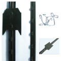America popular steel fence T fence post