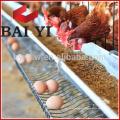 Cage / Uganda Poultry Farm Cage automatique de couche de poulet