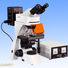 Microscope professionnel à haute efficacité de fluorescence (EFM-3001)