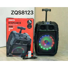 ZQS8123 Hot Sale 8 Inch Rechargeable Battery Bt Portable Speaker With Led Light